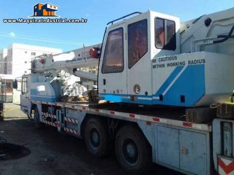 Guindaste para 30 toneladas Zoom Lion